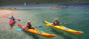 Salty Dog Kayaking