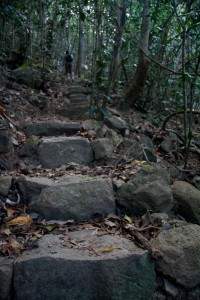 Stairs leading up to Whitsunday Peak