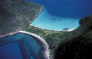 Neck Bay